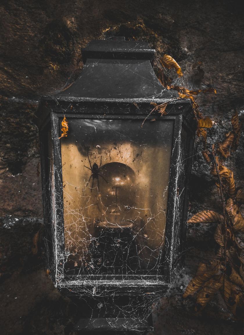 A varázslatos szépségű és hangulatú kép egy mobiltelefonnal készült.