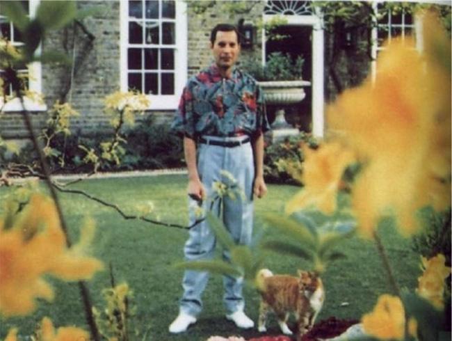 Kensingtoni otthona kertjében kapták le Freddie Mercury-t - ez az utolsó felvétel, ami készült róla.
