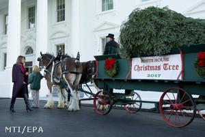 Fehér Ház karácsonyfája 2