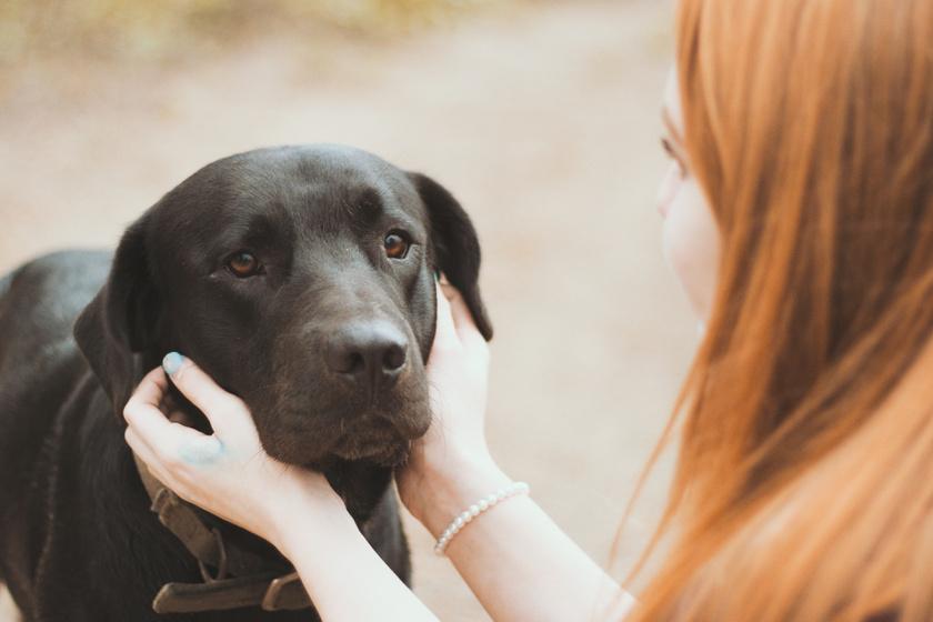 lány kutyával