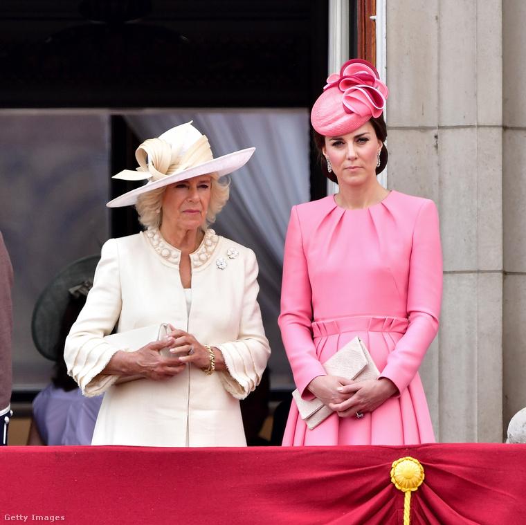 HázasságvesztőkA Celebrity Insider tette közhírré, hogy Katalin hercegné, illetve Kamilla hercegné (Károly herceg felesége) annyira utálják Meghan Markle-t, hogy szeretnének véget vetni az őt Harry herceghez fűző kapcsolatnak, és ezért tesznek is
