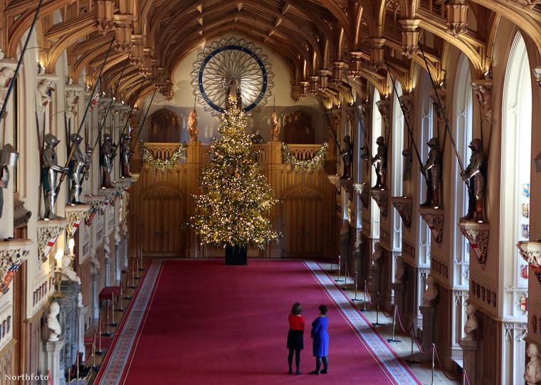 De amíg arra várunk, hogy kiderüljön igaz-e a hír, addig itt van nekünk a karácsonyfa, hogy gyönyörködjünk benne, és stesszeljünk azon, hogy lassan már el kéne kezdeni legalább az ajándékötletek kitalálni