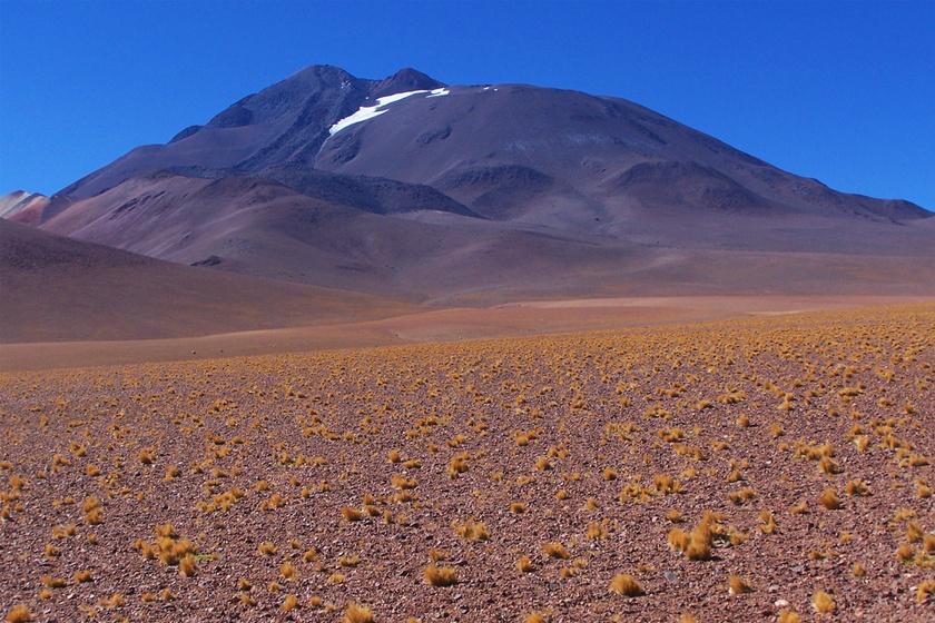 A lányt a 6379 méter magas hegy tetején találták meg, és nem is egyedül.