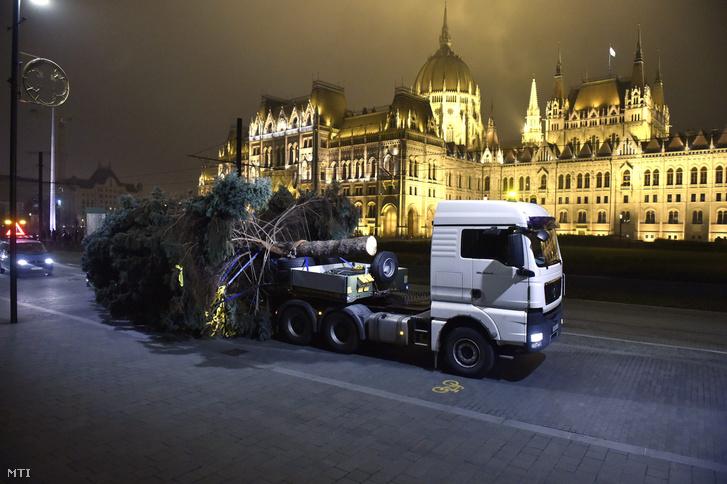 Az ország karácsonyfája Budapesten, a Kossuth téren, háttérben az Országház 2017. november 24-én. A mintegy 20 méter magas, 63 centiméteres törzsátmérőjű, több tonnás ezüstfenyőt, amit egy nyugdíjas házaspár ajánlott fel, Tökölön vágták ki.