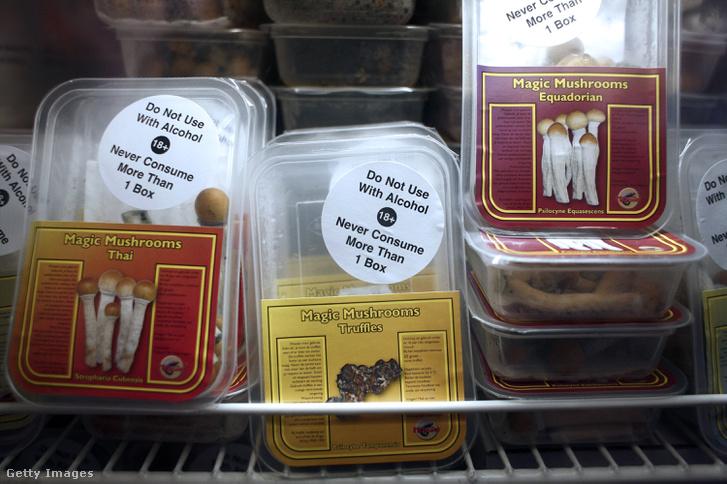 Előre csomagolt pszilocibin gombák egy holland boltban