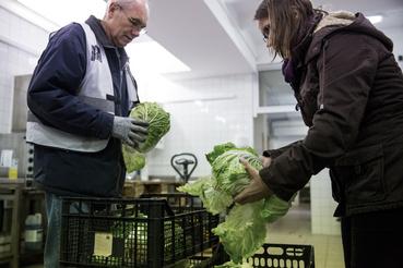 A Grossmarket a legnagyobb piac Ausztriában, az ország zöldség-gyümölcs ellátásának közel harmada innen kerül szétosztásra.