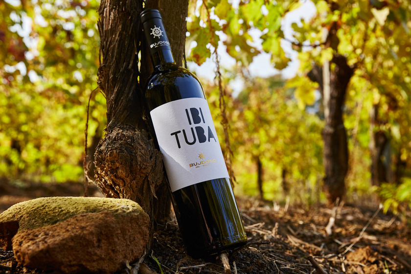 Bujdoso Ibituba Furmint Photo