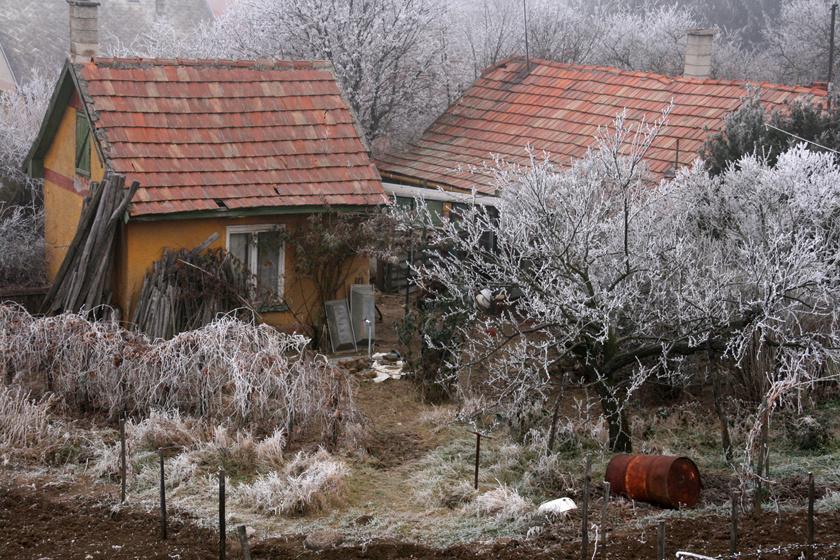 Tarcal egyike a Tokaj környéki romantikus, völgyben fekvő falucskáknak. A mellette magasodó Kopasz-hegyről, a kápolna mellől csodálatos a panoráma, ám a község tavát is érdemes körbejárni.