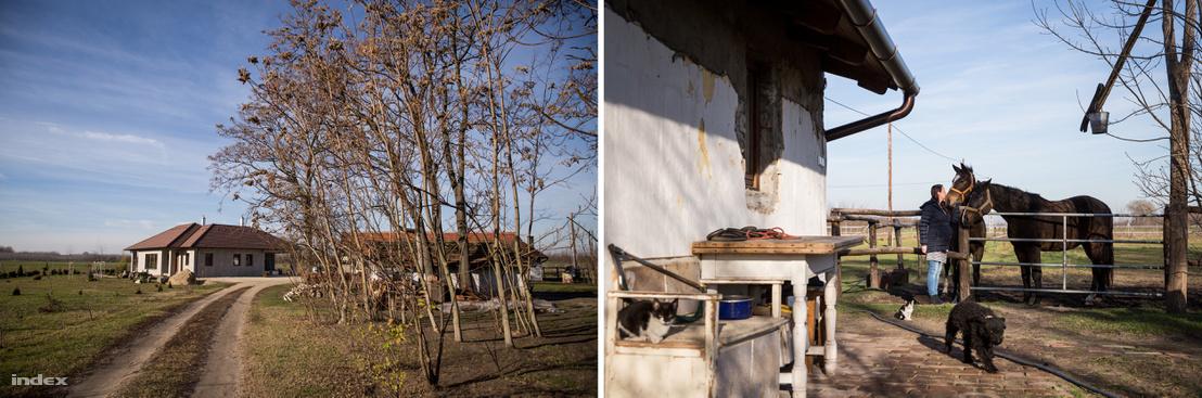 Szívósék néhány hónapja költöztek be a tanyán felépített új házba, második gyermekük már ide fog születni, aggódnak a távvezeték miatt