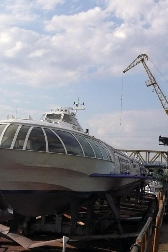 Az Újpesti-öbölben töltik a telet