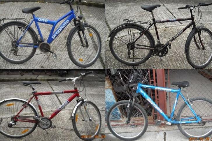 kékpár all