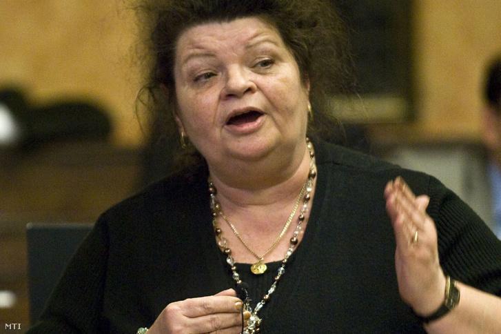 Devánszkiné dr. Molnár Katalin 2009-ben a Parlamentben