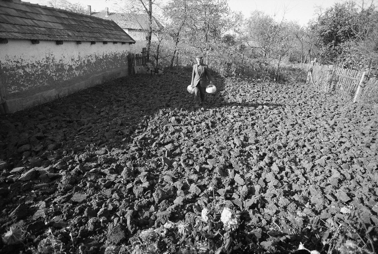 Skarbit 25 éven át dolgozott a Fővárosi Gázműveknél, illetve ingázott Tiszaeszlár és Budapest között. Ezen a képen az otthoni kertben, kezében óriástökkel látható, 1982-ben.
