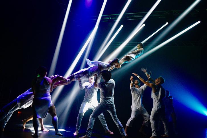 Losers Cirque Company: Összeomlás