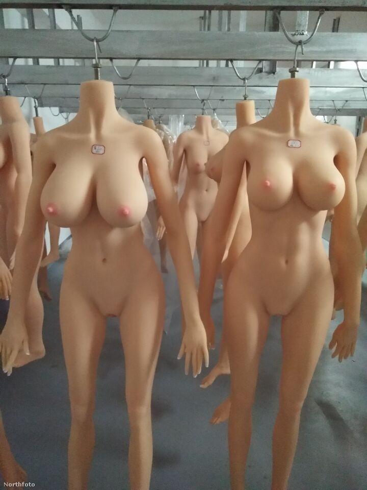 Itt pedig az aprólékosan megtervezett testek várják az aggyal való egyesülést.
