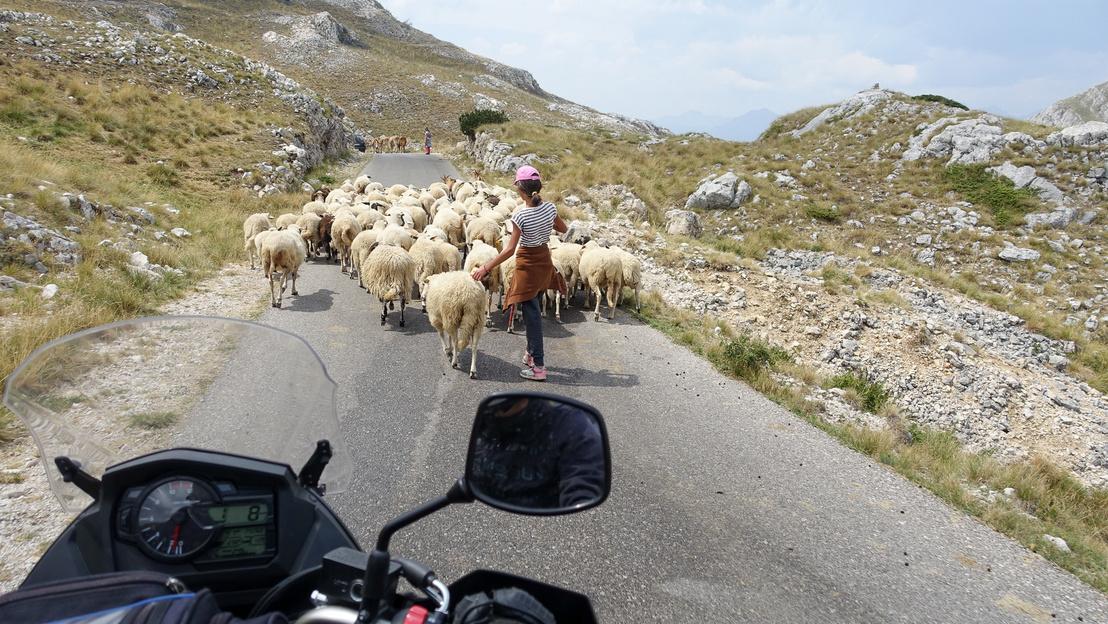 Balkánon kötelező fotó
