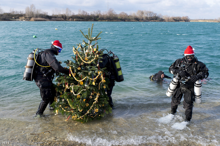 Búvárok karácsonyfával a hegyeshalmi bányatónál megrendezett hagyományos karácsonyi ünnepségen 2017. december 9-én. A rendezvény magyar és osztrák résztvevői feldíszített fenyőfákat helyeztek el a víz alatt.