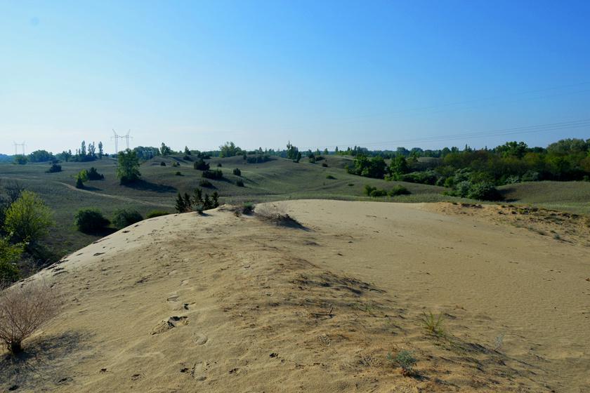 fulophaza homok