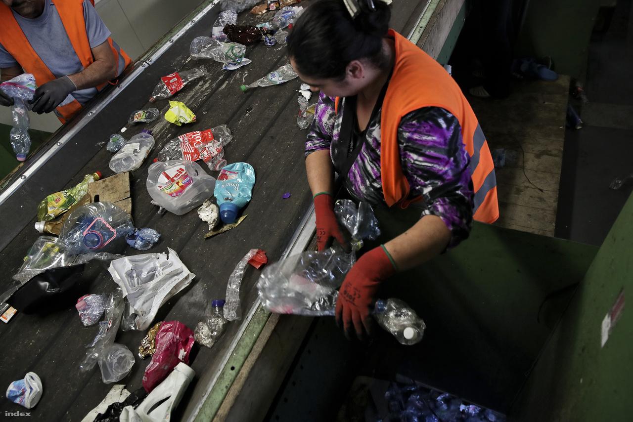 A palack ezután tovább utazik a futószalagon a kézi válogató kabinokba. Itt szedik külön a munkások szín szerint a PET-palackokat. Más fakkba kerül az egyéb műanyagflakon és az etilén fólia is. A válogatók egymás mellett állnak, specializálódva egy-egy fajta hulladékra. Kezük gyorsan jár. A szalag nem állhat meg.