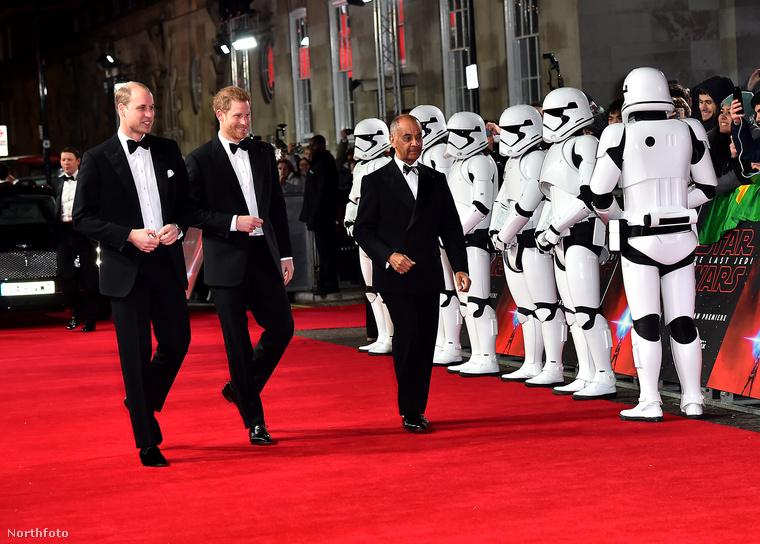 Vilmos és Harry herceg elhaladnak egy sor birodalmi rohamosztagos mellett.Továbbá fotó bizonyítja, hogy...