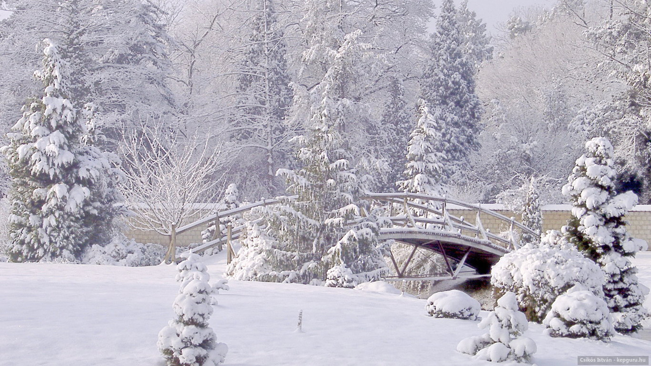 teli-arboretum-erdotelek