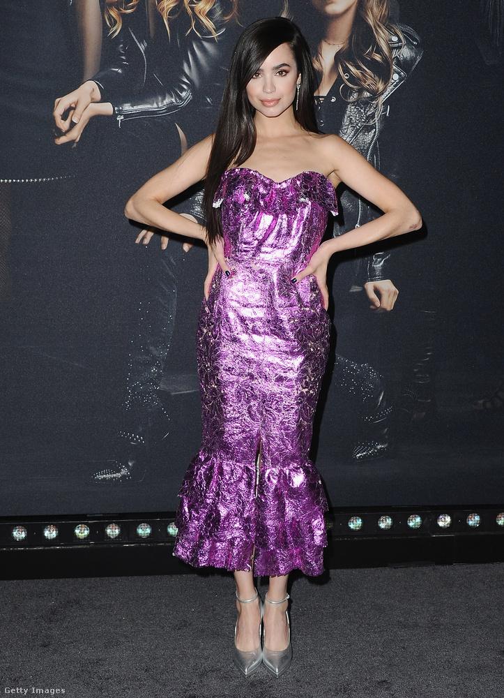 Sofia Carson az Utodók 1-2 és a Két bébiszitter kalandjai című filmekből lehet ismerős.