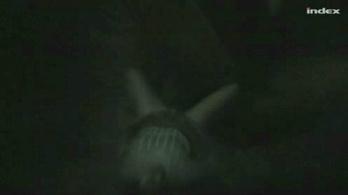 A Cony romboló találatot kapott, de a többi hajóval együtt visszatért bázisára.
