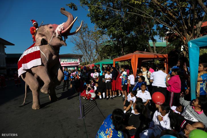 randi két fehér elefánt ajándékok