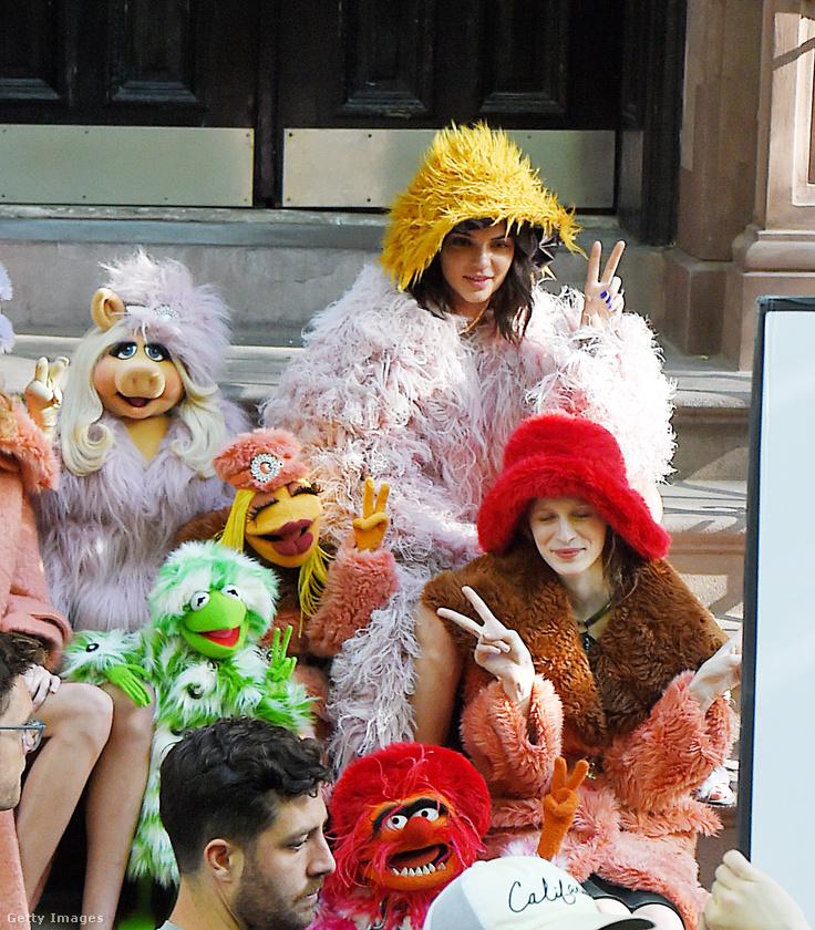 Muppet show karakternek öltözve egy New York-i fotózáson.