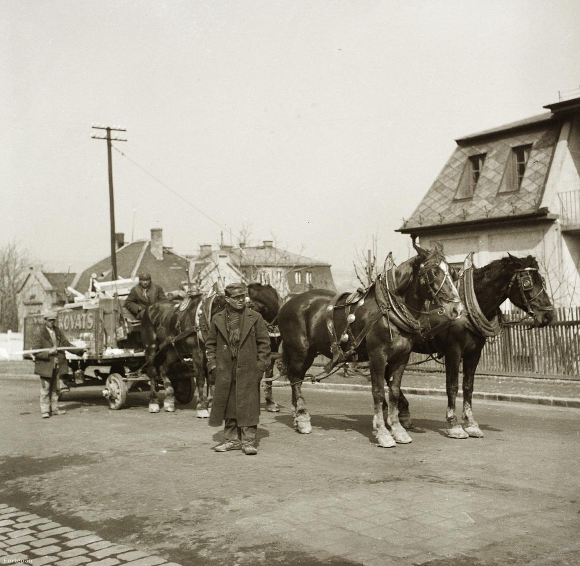 Az Ebner család 1935-ös képén érzésünk szerint ismét Budapesten                         járunk. Kováts bútor? tűzifa? építési-anyag? fuvarozó négylovas                         kocsija épp megállt. De hol?