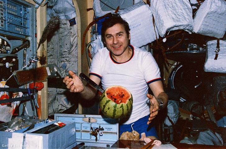 Alekszendr Pavlovics dinnyét vág fel a Szojuz TM-3 űrhajó fedélzetén 1988-ban