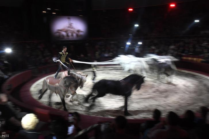 Richter Flórián és fia, Kevin lovasszáma a megnyitón