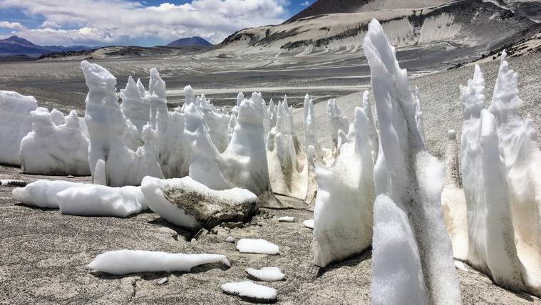 Mit keresnek hópengék a világ legszárazabb sivatagában?