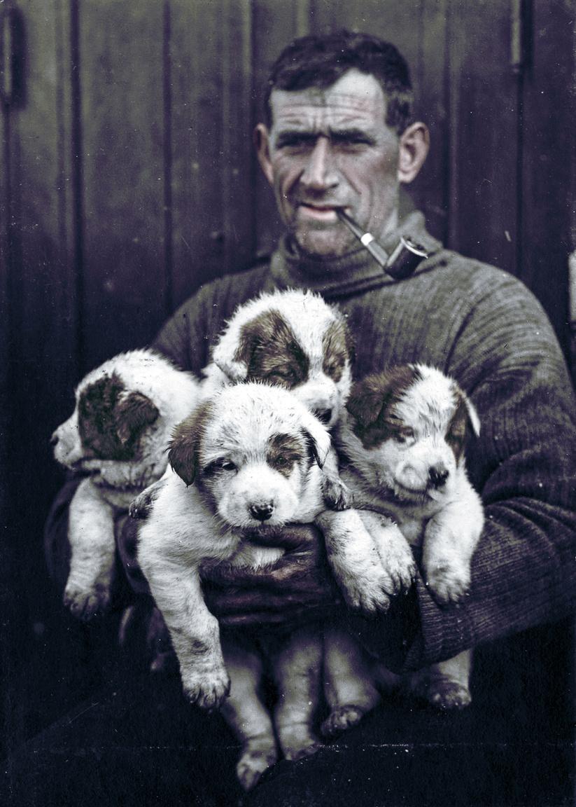 Tom Crean véletlenül keveredett bele az expedíciózásba. 1901-ben az új-zélandi Christchurch-on volt a haditengerészetnél szolgálól ír férfi,, amikor megtudta, hogy Scott legénységet toboroz első expedíciójához. Crean ekkor jelentkezett a Discovery-re. Kitartásával és erejével tűnt ki, az egyik legjobb szánhúzó volt. (A sarkvidékeken sokszor az emberek vontatták a felszerelést.) A visszaemlékezésekből az is kiderült, hogy jó humora miatt is szerették társai. Scott az elsők között hívta második, 1910-ben induló expedíciójára is. Crean a táborlánc kiépítésében vett részt. A sarkpont felé haladva több helyen élelmiszert depóztak be, hogy legyen utánpótlása a pontot elérő és visszatérő csapatnak. Crean és néhány társa kis híján oda is veszett, mert olyan jégtáblán vertek tábort, ami elszakadt a parttól. Crean jégtábláról jégtáblára ugrálva ért partot, majd segítséget hívott. Az ír nem került bele abba a szűk csapatba, amelyik a sarkpont felé tartott. Attól 270 kilométerre fordították vissza két társával, William Lashly-val és Edward Evansszel együtt. Utóbbi egyre rosszabb állapotba került, a skorbut tüneteit mutatta. Egyre gyengébb lett, amivel le is lassította az élelmiszeréből kifogyó kis csapatot. A bázisuktól 58 kilométerre úgy döntöttek, Crean egyedül folytatja az útját és segítséget kér. A néhány darab kekszel és csokival, sátor nélkül útrakelő Crean 18 óra alatt le is tudta az 58 kilométeres távot. Néhány nappal később pedig Evanst is megmentették. Crean néhány évvel később Shackletonnal is kemény napokat élt meg, ott volt abban a csónakban, amellyel 1500 kilométert tettek meg, hogy segítséget kérjenek.