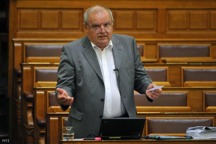 Nyikos László 2013-ban