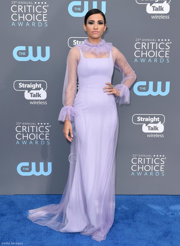 Nagyon ment a lila a Santa Monica-i Barker Hangarban megrendezett 23.Critics Choice Awardson