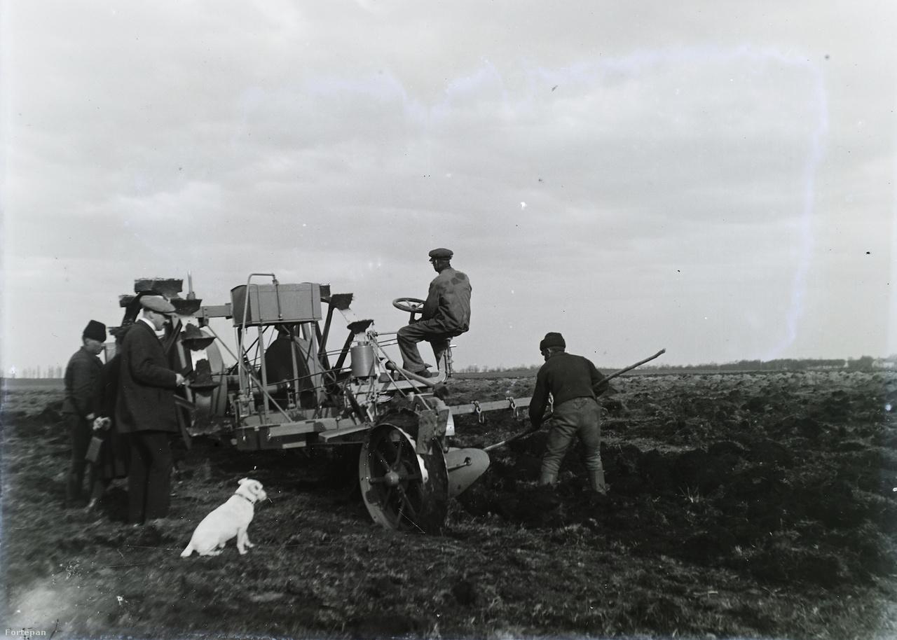 Gépi szántás az első világháború előtt, 1914 körül.