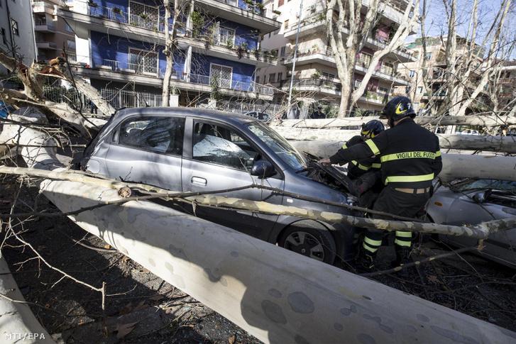 A viharos erejű szél által kidöntött fák közé szorult autók roncsait vizsgálják tűzoltók Rómában 2018. január 17-én.
