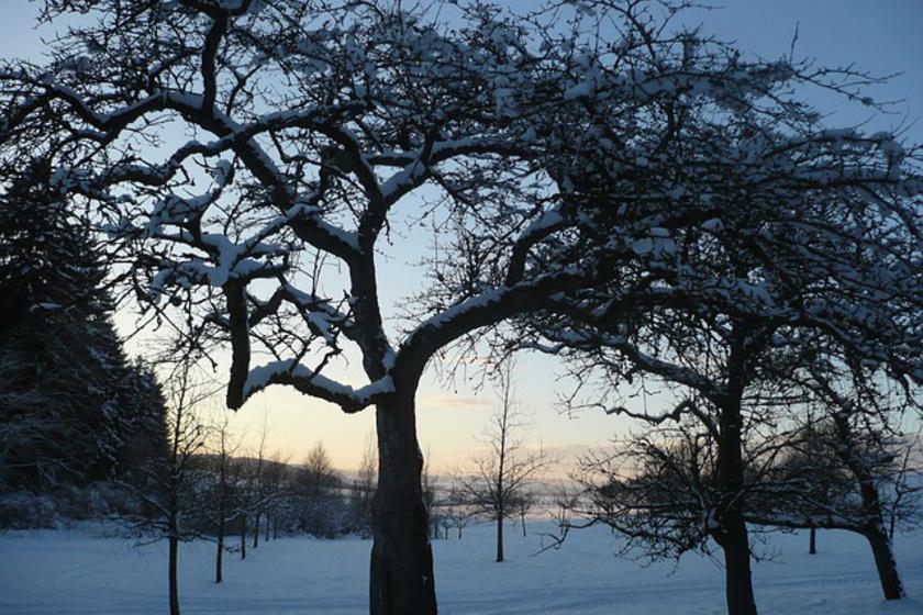 A tél is jó: ezek miatt érdemes örülni neki