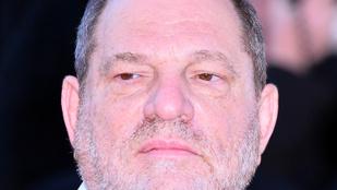 A Weinstein-botránynak több okból sem lesz pornó változata