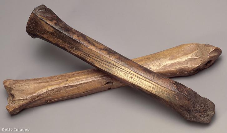 XII. századi csont korcsolyák