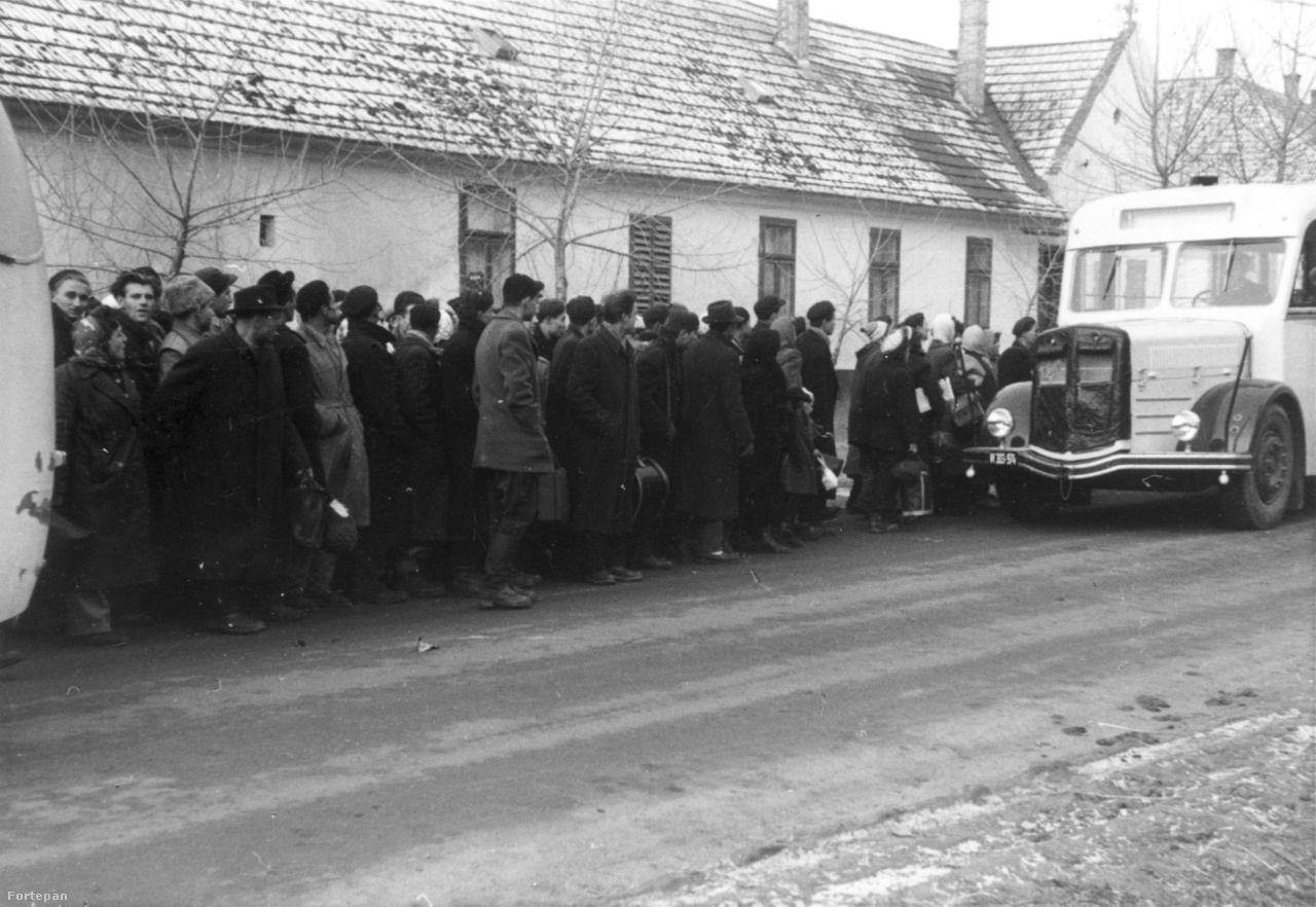 Dél-Afrikába összesen 1296 magyar került, pontosan annyi, mint ahány menekült befogadása az elmúlt hetekben hangos politikai ügy lett Magyarországon. Az egyik transzport éppen december 24-én indult: a repülő Münchenből szállt fel, hogy hátralévő életük új színhelyére vigye őket. A tömött gépen még egy karácsonyfának is szorítottak helyet, amelyet girlandokkal és sztaniolpapírból hajtogatott csillaggal felcicomázva a folyosón állítottak fel. Amikor a fa fölötti lámpát is felgyújtották, az lett a betlehemi csillag - így utaztak át Afrikán, a kisjézushoz érkező szerecsen király földje fölött.
