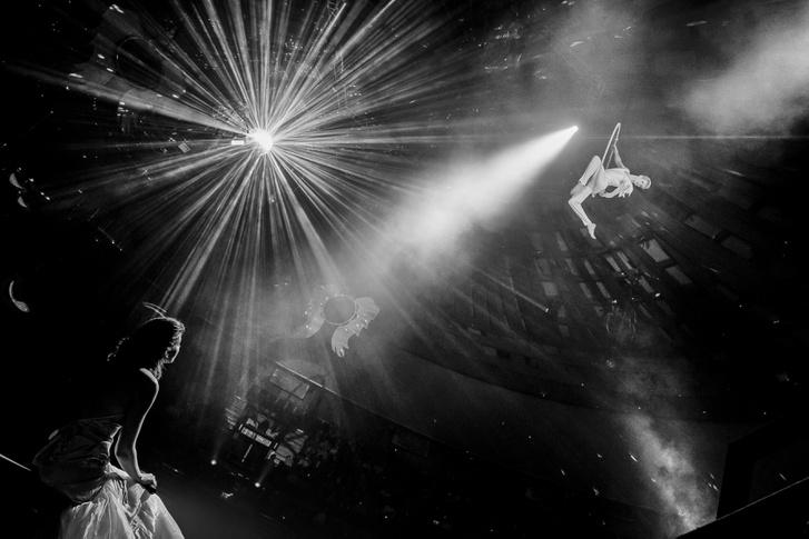 Művészet 3. díj Zsolnai Péter: Fent és lent                          A cirkusz mindig a csillogásról és az együttműködésről szól. A mai virtuális világ  határtalan pörgés élményéhez képest lassúnak tűnik a bemutató. Amikor az ember belép a nézőtérre és beleszippant a manézs illatába, megpillantja az artisták műsorát és el kezd tódulni az adrenalin.
