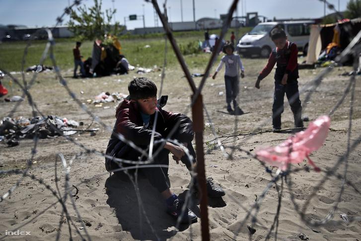 Menekültek a röszkei tranzitzónában 2016 áprilisában