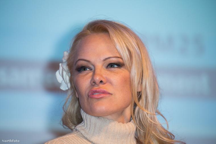 A színésznő legutóbb tavaly áprilisban hívta fel a figyelmet magára azzal, hogy kicsit megváltoztatta az arcberendezését, akkor egy plasztikai sebész így nyilatkozott a beavatkozásról.