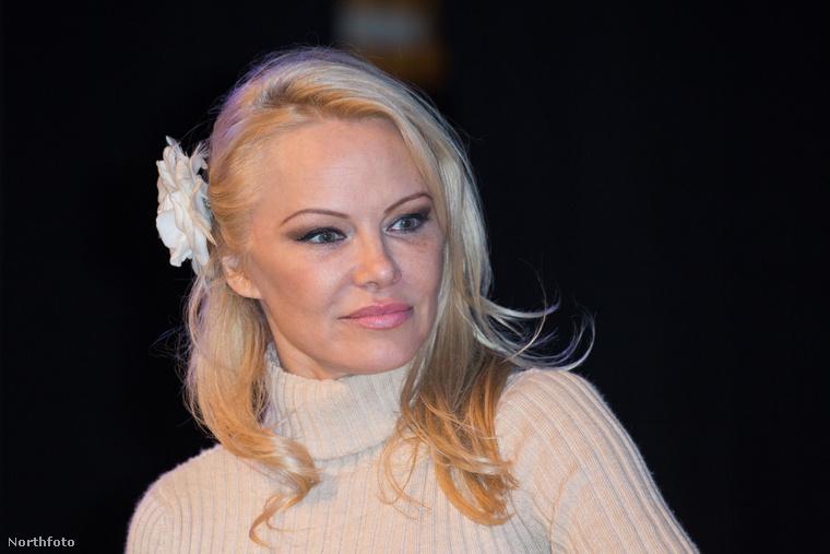 """""""Nahát, vajon ki lehet ez a valószerűtlenül sima arcú asszonyság?"""" - gondolhatja Pamela Anderson, mikor tükörbe néz."""