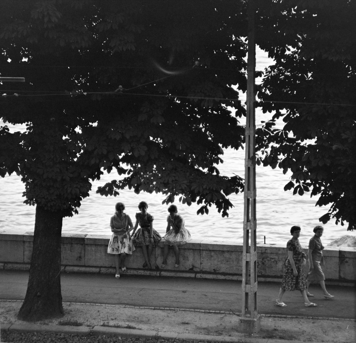A Budai Ifjúsági Park a fővárosi fiatalok legkedveltebb nyári szórakozóhelye volt a hatvanas és hetvenes években. A Duna-parton gyakran hosszú sor kígyózott a bejutásra várva.