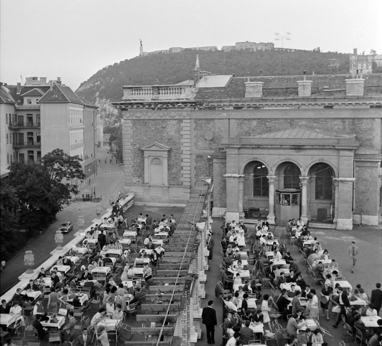 Az Ifipark 1961. augusztus 20-án nyitott meg, és az első évében csupán egyetlen hónapig tartott nyitva.