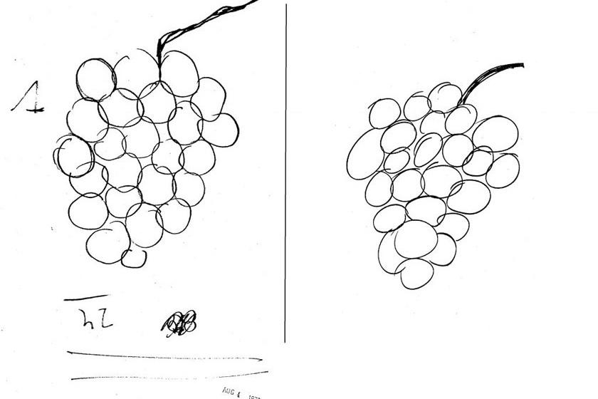 Bal oldalon az eredeti, jobb oldalon, amit Uri Geller másolt le az általa nem látott rajzról.