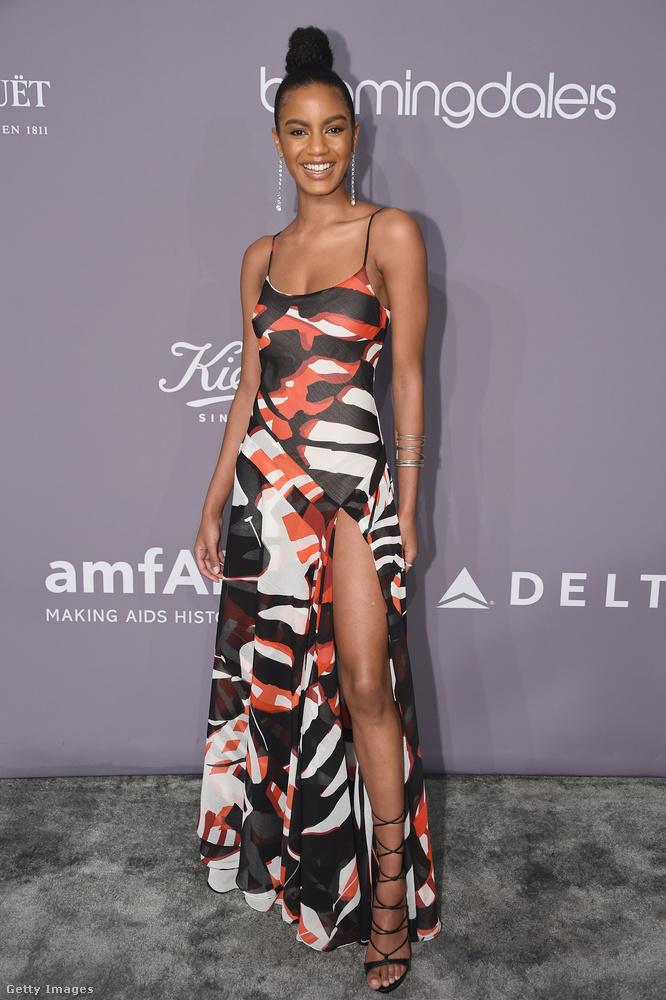 Ebonee Davis modell a DKNY combvillantós ruháját választotta az amfAR-gálára.